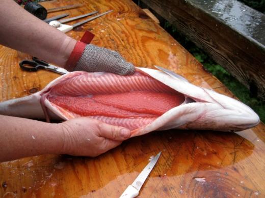 Salmon caviar curing instructions kosher salt brine for Caviar fish eggs